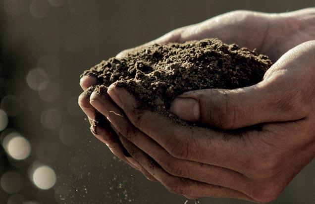 a pair of hands holding a small pile of dirt with the sun shining down